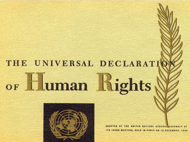 30 Quyền con người là gì?