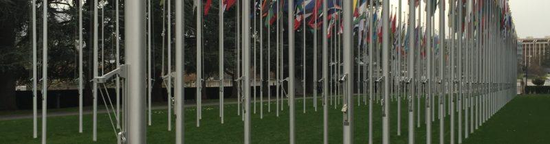 cescr-flag-photo